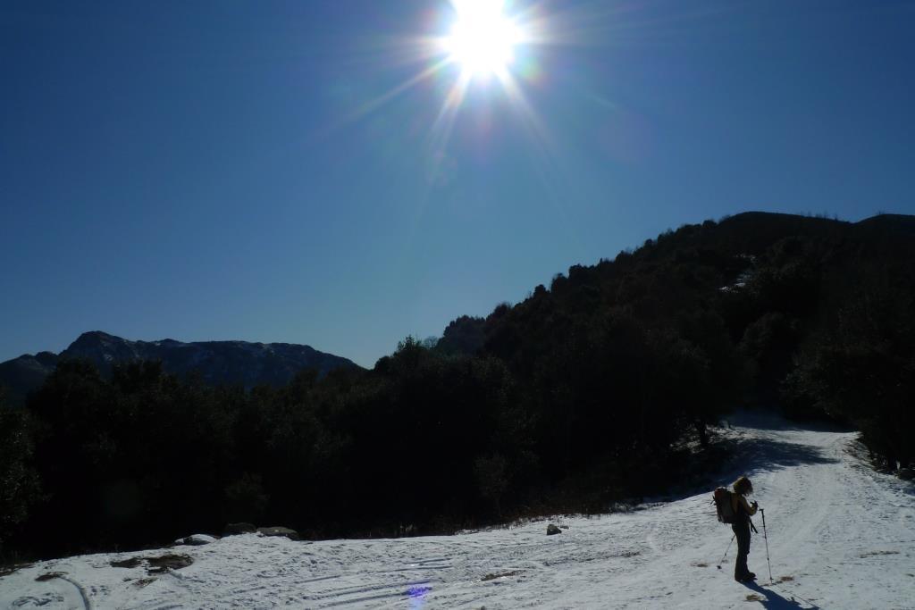 gel Montseny (18)
