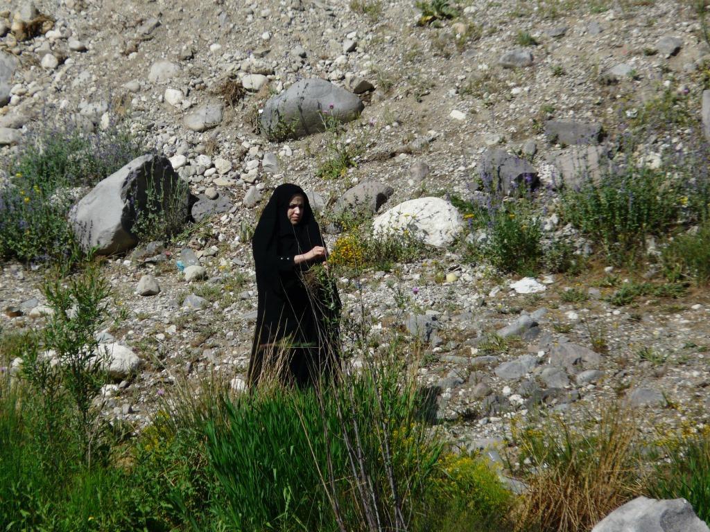 iran (21)