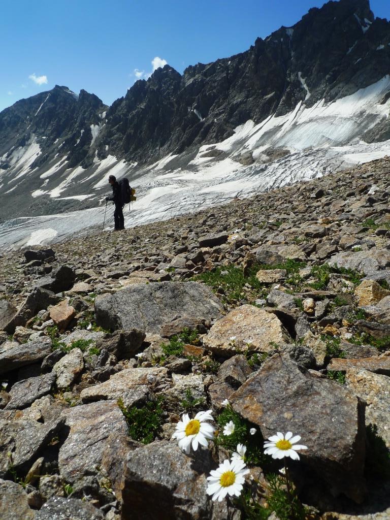 Elbrus (40)